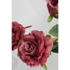 Роза тройная