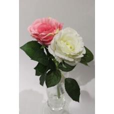 Роза короткая в ассортименте