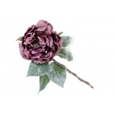 Декоративный цветок Пион сиреневый
